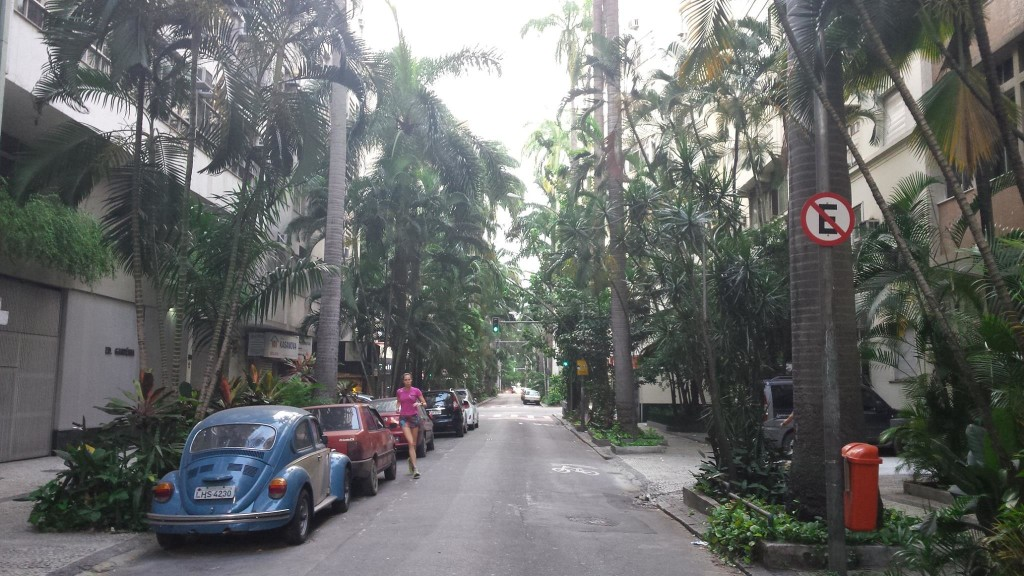 Ulica palmowa.